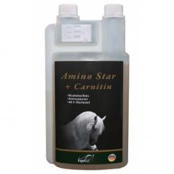 Amino Star Liquid + Carnitin